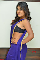 Actress Priya in Blue Saree and Sleevelss Choli at Javed Habib Salon launch ~  Exclusive Galleries 021.jpg