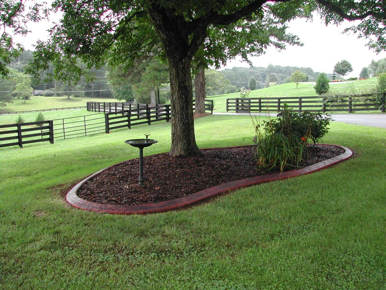 Front Backyard Landscaping Designs And Pictures The Perfect