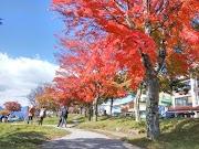 Momiji here i come!!! Day 5 - Nikko