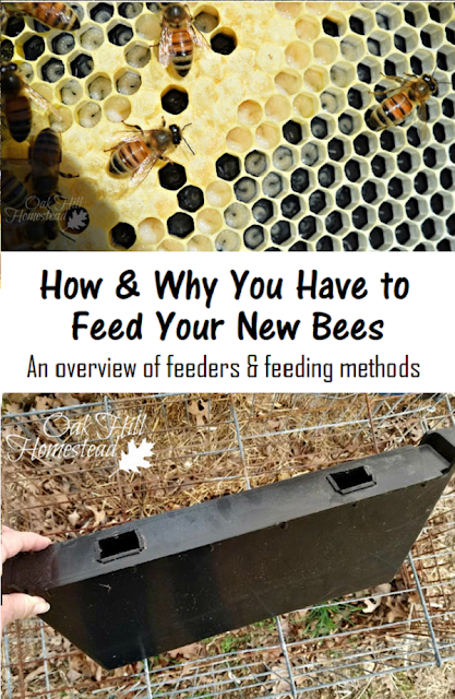 How, why and what to feed your new bees, an overview of bee feeders and feeding methods - from Oak Hill Homestead