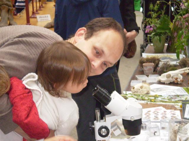 Examining Nature Through a Microscope