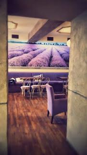 Wnętrze Cafe Lavenda
