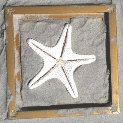 sand plaster mold with starfish