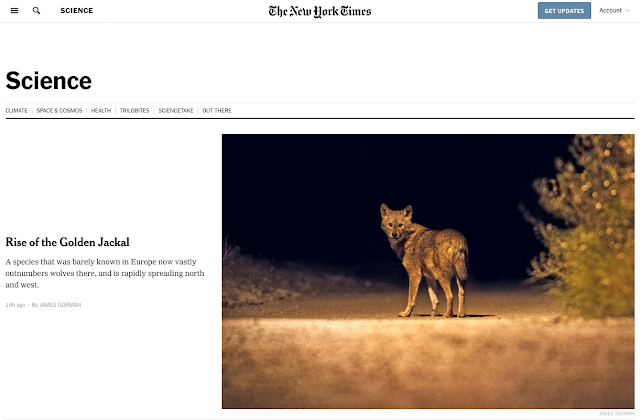https://www.nytimes.com/section/science