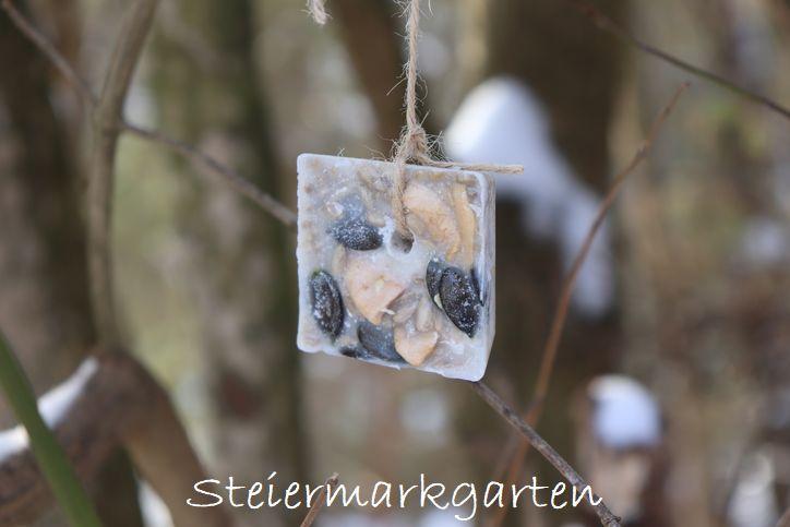 Vogelfutter-DIY-mit-Kürbiskernen-Steiermarkgarten