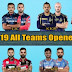 IPL 2019 Openers of All Teams