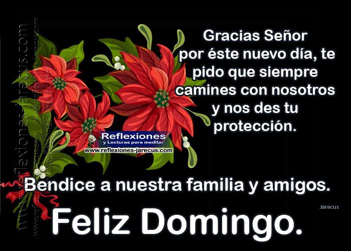 Feliz domingo, gracias Señor por éste nuevo día, te pido que siempre camines con nosotros y nos des tu protección