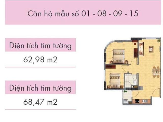 Căn hộ số 01, 08, 09, 15 tòa CT1A (các căn góc)