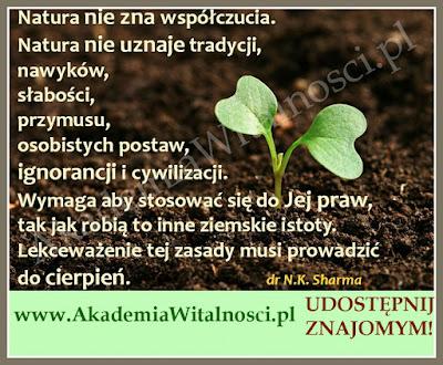 http://www.akademiawitalnosci.pl/
