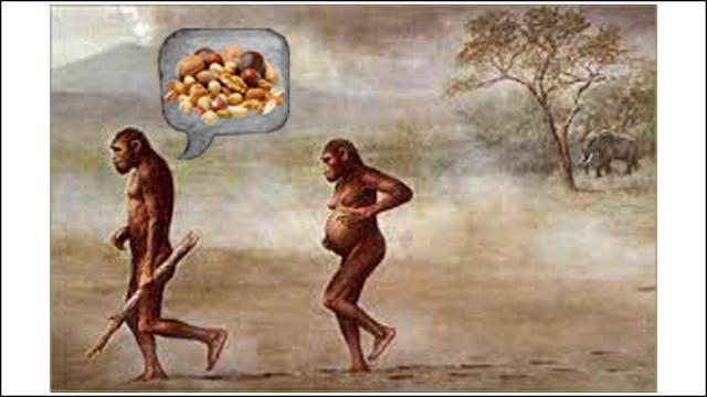 ETAPA 1 - Los primeros representantes del género Australopithecus