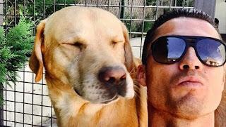Cristiano ronaldo dogs