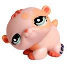 Littlest Pet Shop Multi Pack Hamster (#1658) Pet