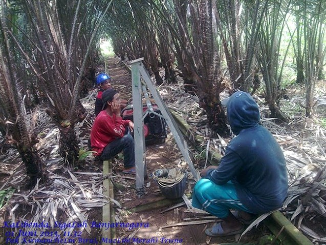 Hutan Salak Banjarnegara