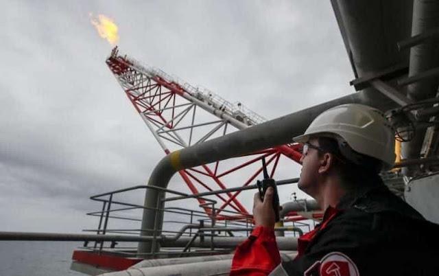 Petroleo Oil