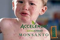 Revés para Monsanto. No lanza su nuevo pesticida, por efectos secundarios
