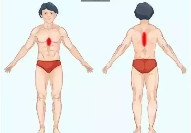 身體的語言:疼痛對照表(疼痛與器官有關)