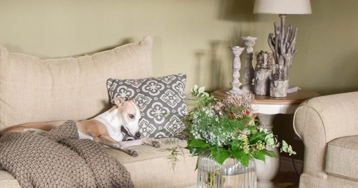 woher hat sie das nur tipps f r eure naturdeko sammlung teil 1 der blumenstrau eclectic. Black Bedroom Furniture Sets. Home Design Ideas