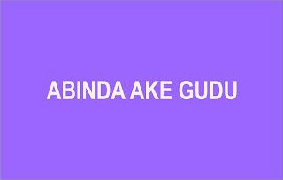 ABINDA AKE GUDU hausa novels world