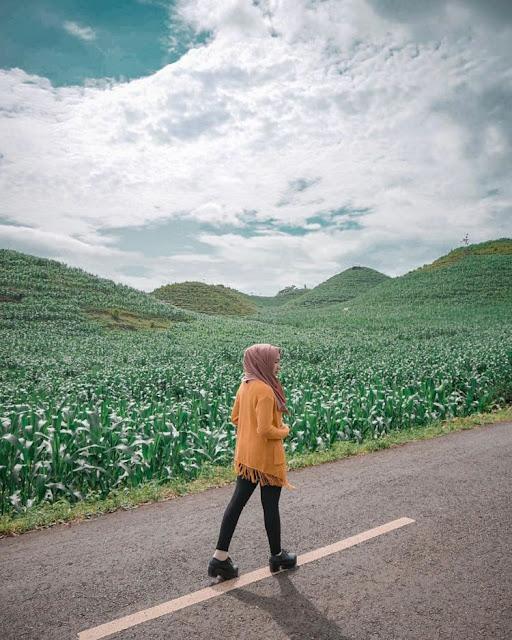 Keindahan landscape Bukit Teletubbies Gunung Kidul