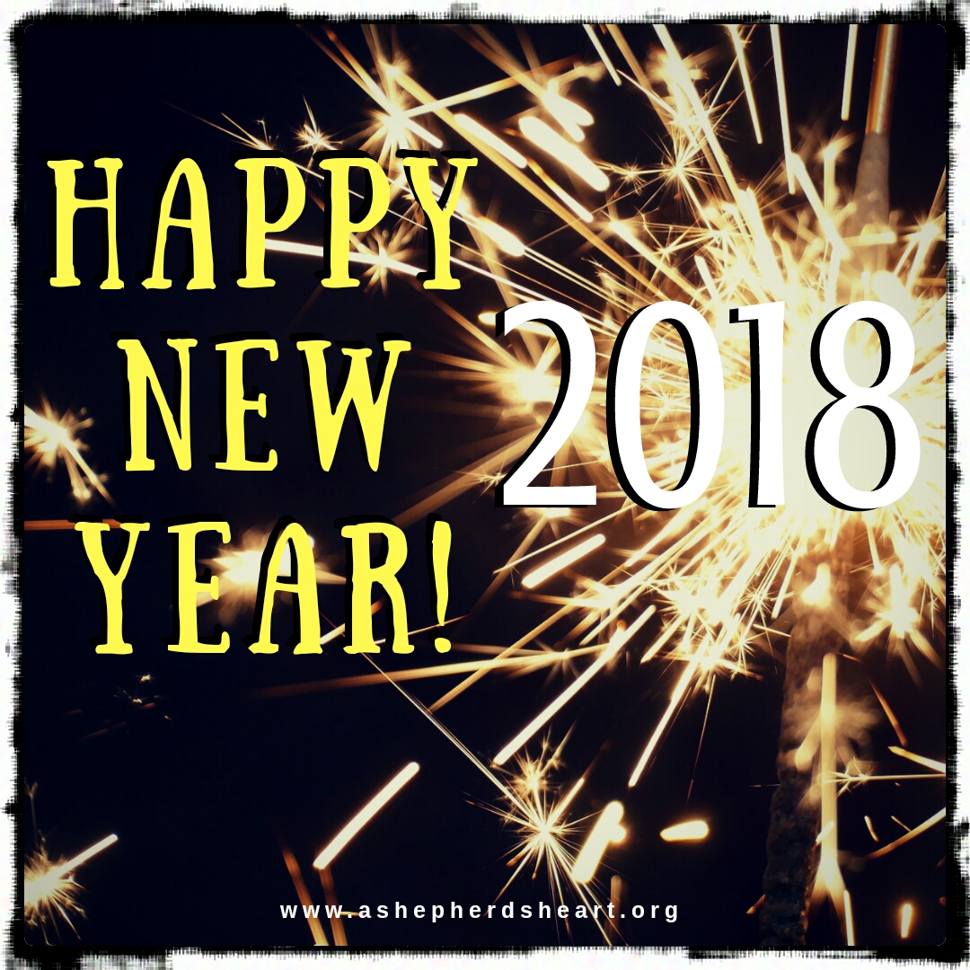 A Shepherd's Heart: Happy New Year: Entering The New Year With Hope