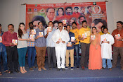Evaro Thanevaro audio function-thumbnail-18