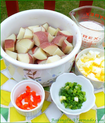 Apple Cider Chive Potato Salad, a new twist on a favorite picnic side dish | Recipe developed by www.BakingInATornado.com | #recipe #potato