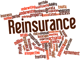 Reinsurance Agreements