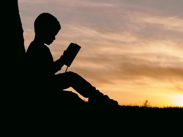 literatursommer-kinder-und-jugendliteratursommer-maedchenbuecher-jungenbuecher-lesender-junge