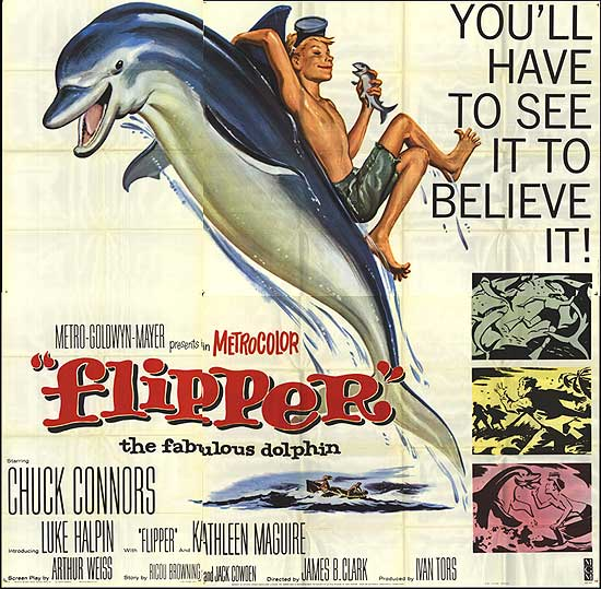 Flipper movieloversreviews.filminspector.com