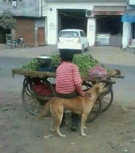 तस्वीरें जिन्हें देख आप भी बोलेंगे की परमात्मा इन लोगों को सध्बुधि दे (funny Images In Hindi),  funny images in hindi, most funny images, latest funny images, hindi funny images