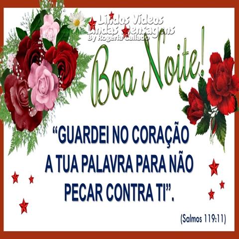 """Boa Noite!  """"GUARDEI NO CORAÇÃO  A TUA PALAVRA PARA NÃO  PECAR CONTRA TI"""".  (Salmos 119:11)"""
