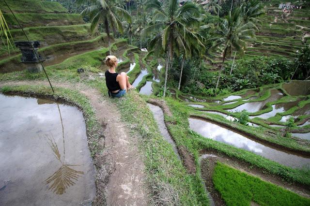 Rizières Tegalalang à Bali