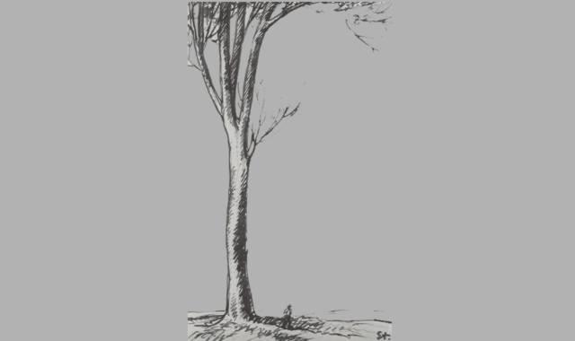 Einzelner Baum