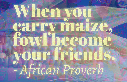 When you carry maize, fowl become your friends African Ewe Proverb