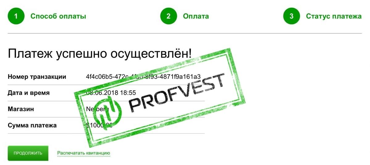 Наш вклад в netberg.cc