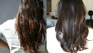 minyak argan untuk rambut rontok