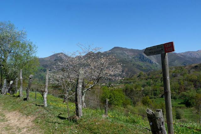 GR-102 Ruta del Camín Real del Sellón.