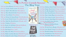 A Perfect Cornish Summer Blog Tour