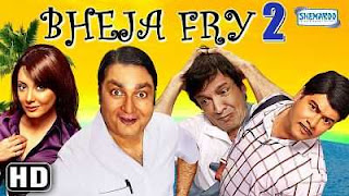 Bheja Fry 2 (2011) Full Movie Download 300mb WEB-HD