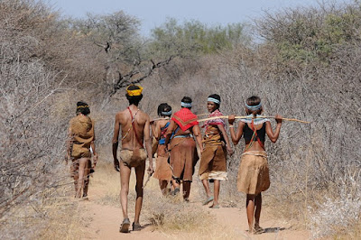 botswana, trivu, indigena, africa