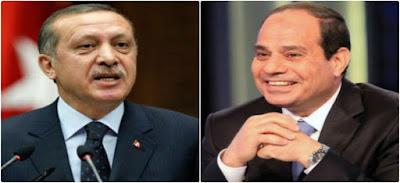 الرئيس عبد الفتاح السيسى واردوغان