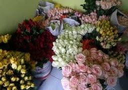 jual beraneka macam bunga potong