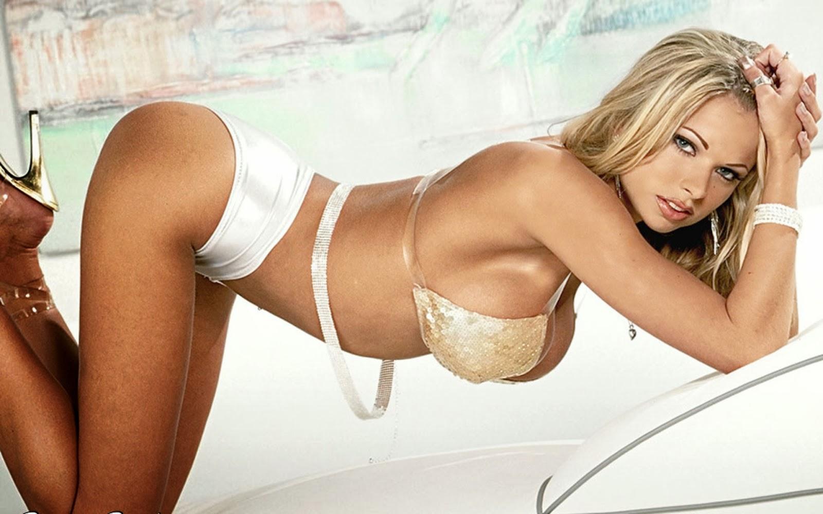 Actriz Porno Estadounidense Se Retira pornstars: 2013