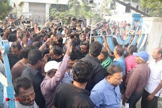 Tamil Film Industry Jallikattu Support Protest of Jallikattu  0074.jpg