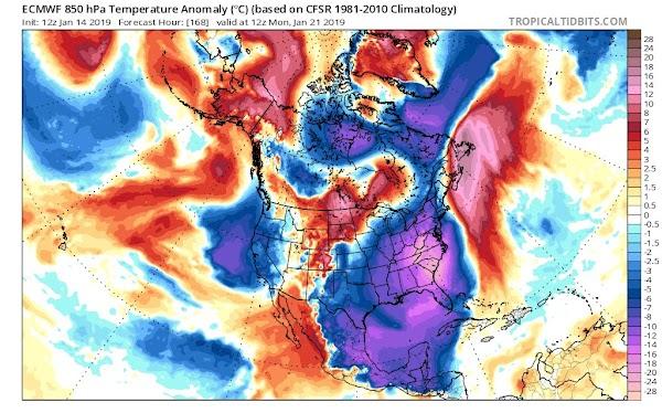 Video: Frío polar llegará a Yucatán este fin de semana
