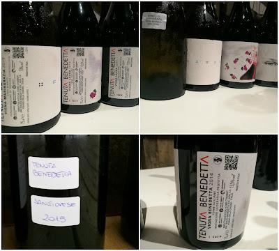 tenuta benedetta etna vini