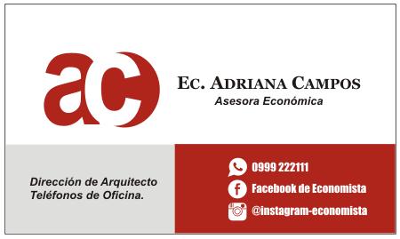 tarjetas para economista tarjetasdepresentación
