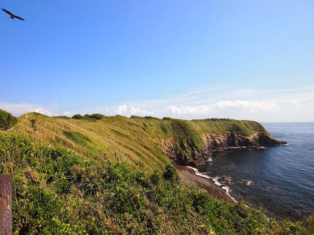ウミウ展望台から見た赤羽根海岸の断崖