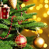 Τέλος τα Χριστουγεννιάτικα Δέντρα από το Instagram - Δες τι στολίζουν όλοι φέτος