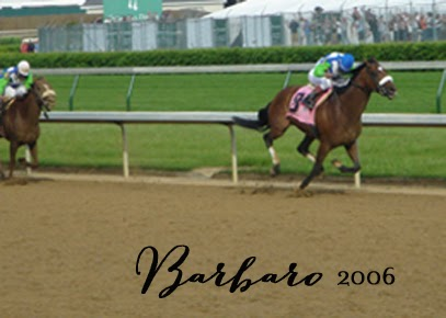 2006 Kentucky Derby Winner Barbaro | DerbyMe.com